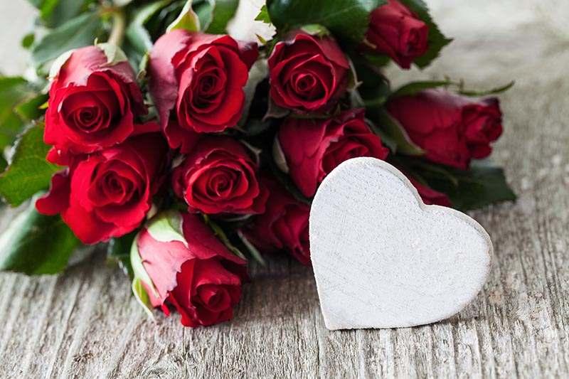 Rote Rosen und weißes Holzherz
