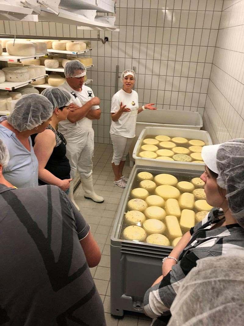 Frau erklärt den Reifungsprozess von käse am Salzbecken mit Käselaiben