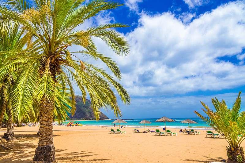 Palmen am Strand mit blauem Wasser