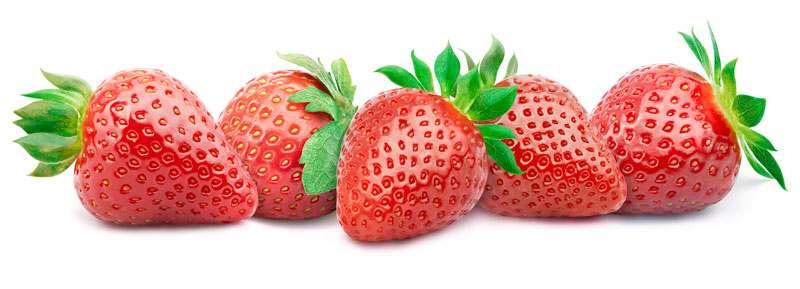 Erdbeeren auf weißem Hntegrund